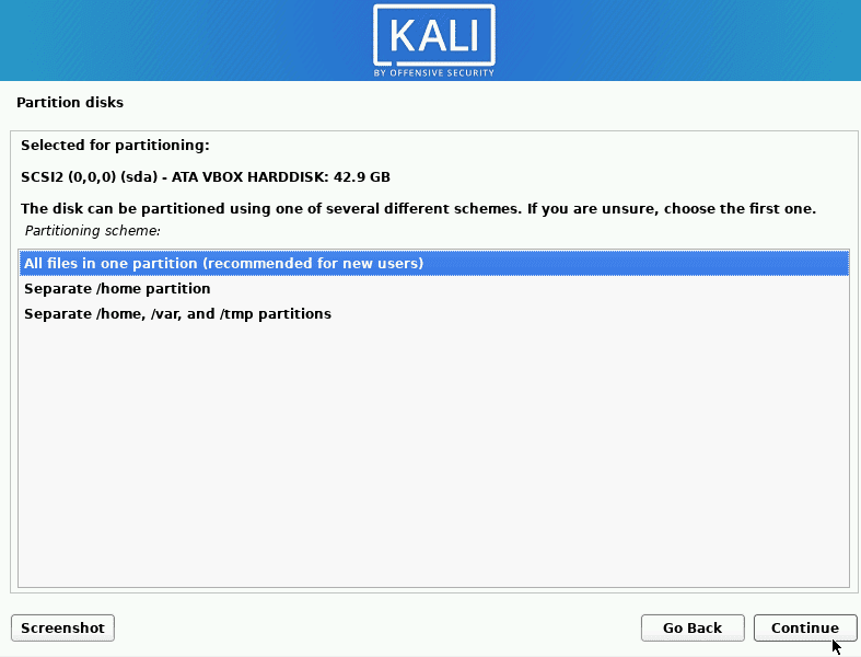kali linux select the partitioning scheme