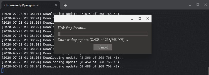 Update Steam