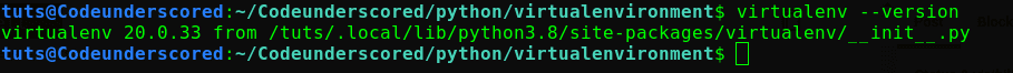 checking the version of virtualenv tool